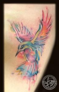 trevhummingbird